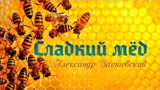 Александр Закшевский - Сладкий мёд